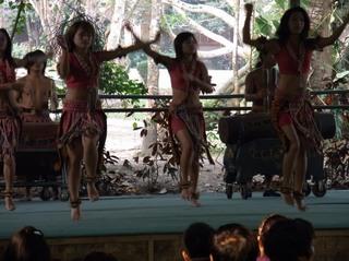 民族舞踊.JPG