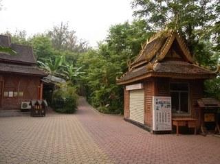 熱帯風景.JPG