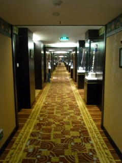 ホテル廊下.JPG