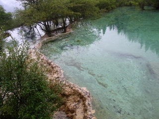 盆景池2.JPG